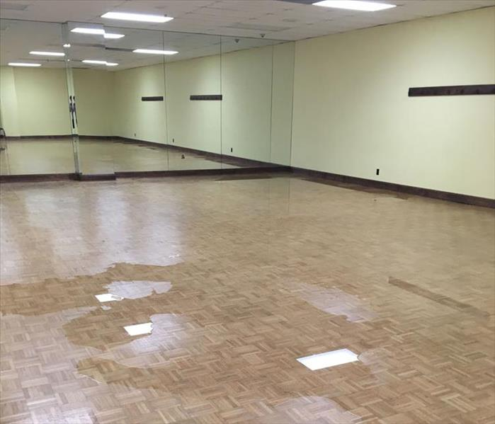 Phoenix Ballet Studio Needs Water Removal Before
