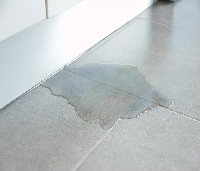 Water Damage You Need Our Crew At SERVPRO When Your Phoenix Home Requires Water Cleanup Services