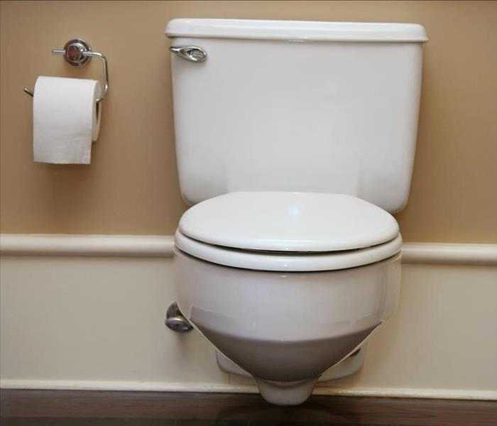 Water Damage Water Removal After a Toilet Overflow in Your Phoenix Home